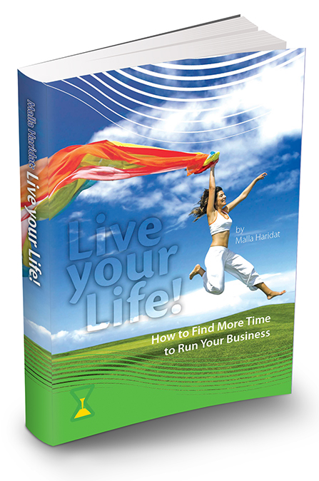 Live your Life: How to Find More Time to Run Your Business